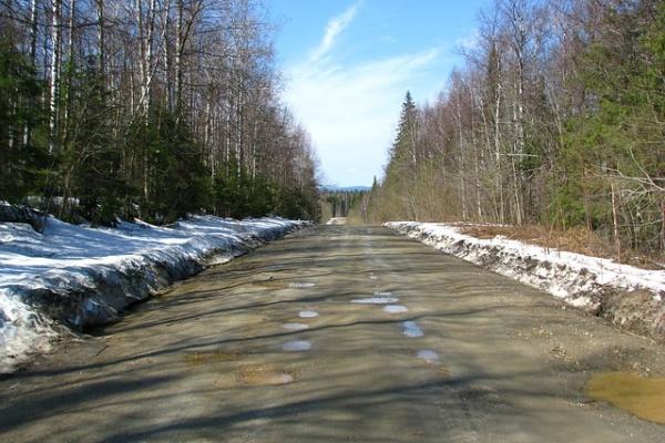 Власти нашли подрядчика на содержание воронежских дорог за 1,6 млрд рублей