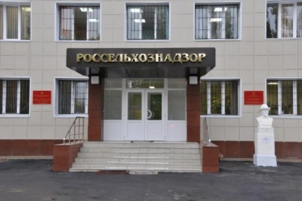 Дмитрий Изюмов: «Воронежская область слишком близка к очагам  опаснейших инфекций животных»