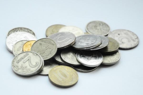 Прожиточный минимум в Воронежской области вырос на 150 рублей