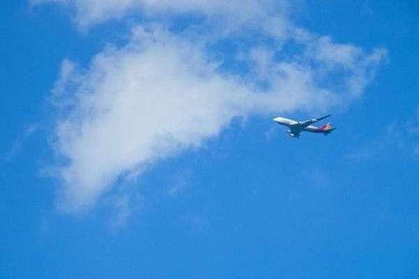 Воронежская прокуратура выясняет причины задержки авиарейса в Болгарию