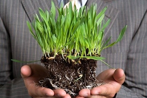 Сбербанк предлагает аграриям выгодные кредиты