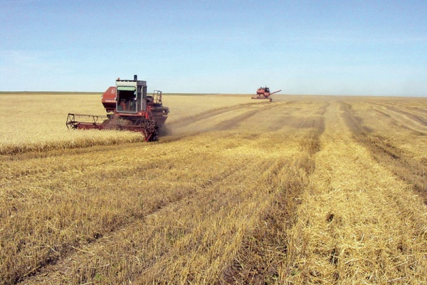 Правительству Воронежской области вменили в вину нарушение соглашения с Минсельхозом