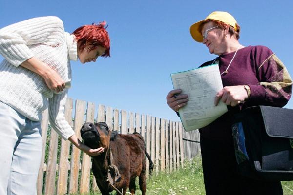 В Воронежской области крупные агрохолдинги вытесняют фермеров