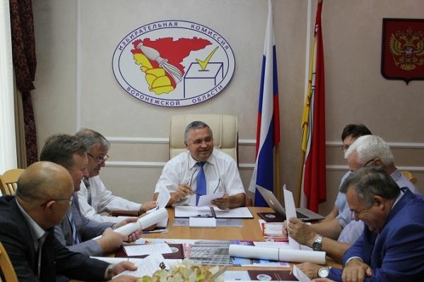 Глава Воронежского облизбиркома: «Эта кампания была близка к образцу»