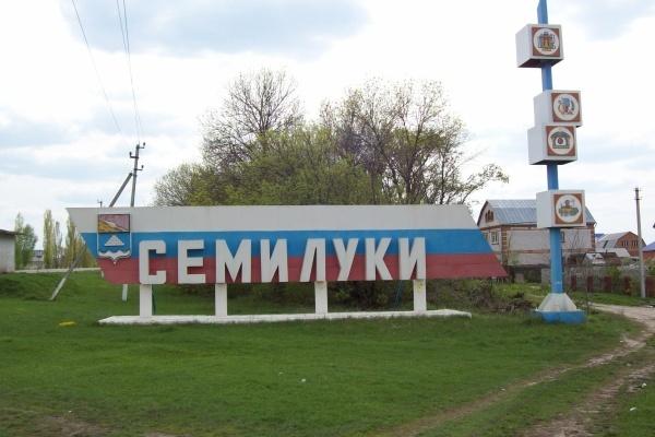 Кресло главы Семилукского района Ирины Кокоревой продолжают расшатывать