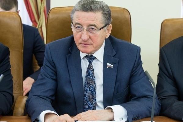 Воронежский сенатор предложил объединить усилия в деле благоустройства