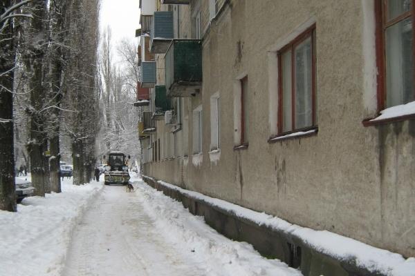 Мэр Воронежа угадал со снегопадом