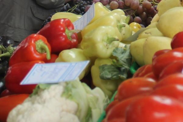 В воронежских школах детей кормили гнилыми фруктами и гусеницами