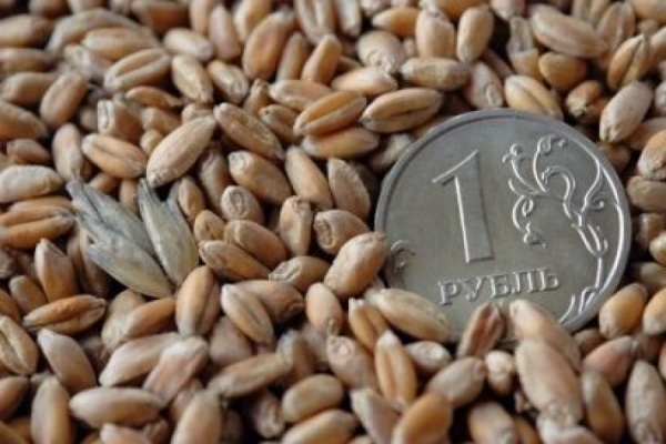Воронежская область получит федеральных субсидий на 600 млн рублей