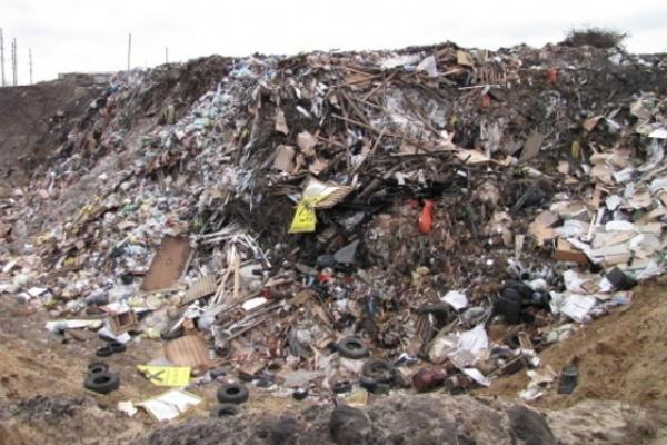 У организатора незаконной свалки под Воронежем конфискуют землю