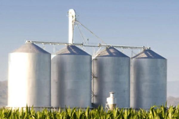 В Тамбовской области появится завод по производству биотоплива