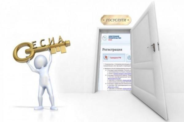 Половина жителей Тамбовской области получают госуслуги в интернете