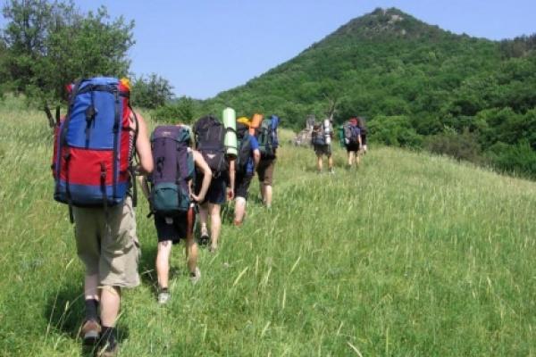 Туристы оставили в бюджете Воронежской области почти 100 млн рублей