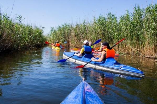 Воронежская область в развитии туризма осталась без федеральной поддержки