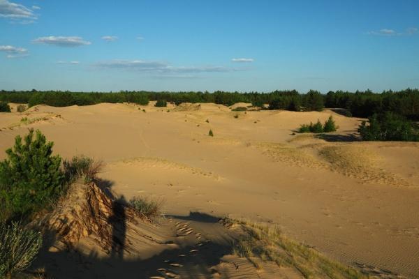 Воронежский туризм развивается за счет села