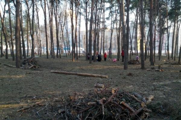Город Воронеж стал больше на один земельный участок
