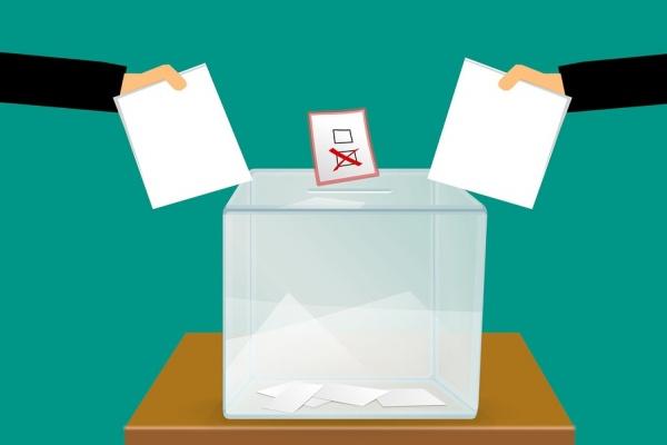 Что даст «Умное голосование» Навального кандидатам в воронежскую гордуму?