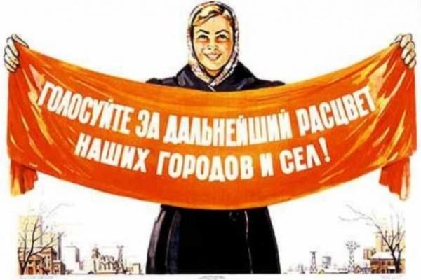 Воронежские партийцы разбрелись по сельским районам