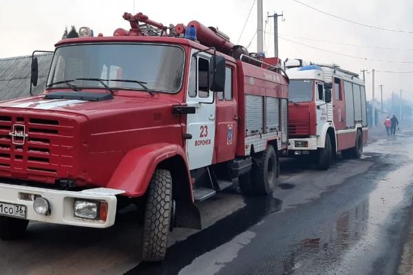 В Воронежской области локализовали пожары на 335 га