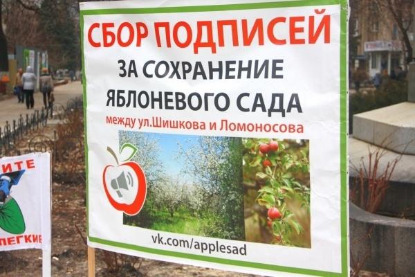 Деревья в воронежском яблоневом саду вырубили незаконно