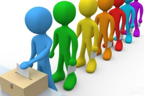 Почти 300 тысяч воронежцев уже проголосовали в день выборов