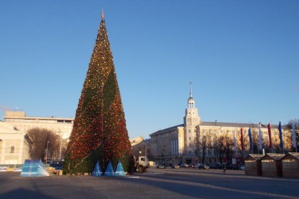 Подрядчик усомнился в легальности торгов наустановку основной елки Воронежа