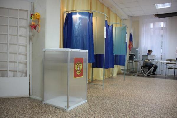 В Воронежской области сократилось число избирателей
