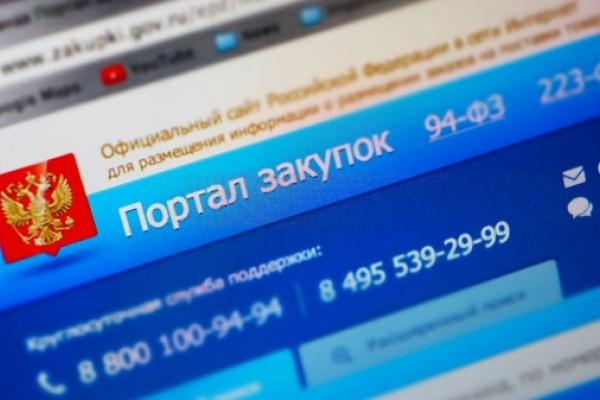 Воронежские аудиторы выявили нарушения в муниципальных закупках