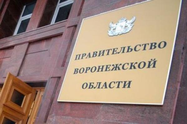 Воронежский губернатор подобрал замену Оксане Соколовой