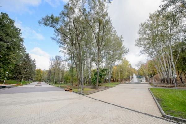 Распоряжаться Зелёным театром будет Воронежский концертный зал