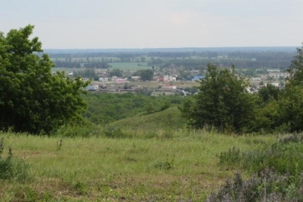 Правительство Воронежской области получило право отдавать землю без торгов