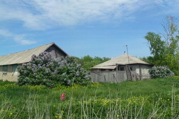 Жилищно-коммунальные субсидии для воронежских селян сокращаются с каждым годом