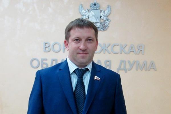 Роман Жогов: «Даже самая  большая правительственная программа не заменит маленькой инициативы простых воронежцев»