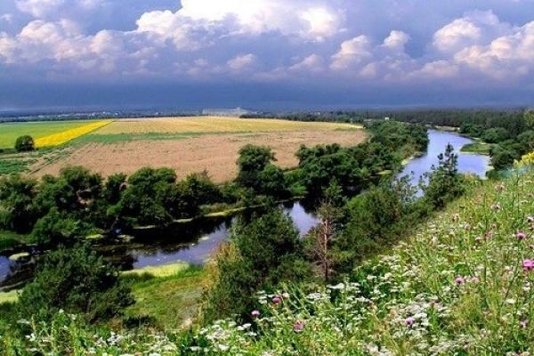 Под Воронежем украли половину озера Круглого