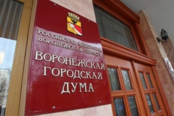 Воронежские депутаты отстаивают свои корпоративные интересы