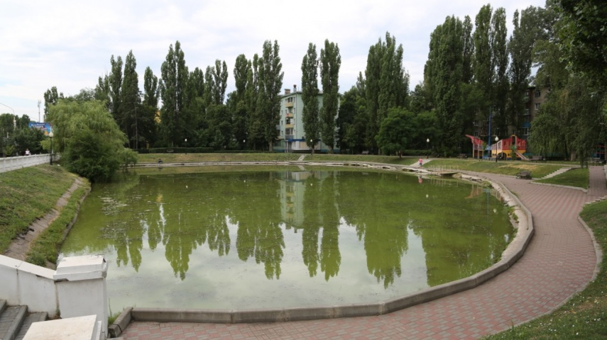 В Воронеже очищают водоем в сквере «У озера»