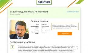 «Коррупция и роскошь» и другие мотивы воронежских «Лидеров России»